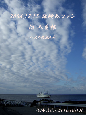 東海汽船入港