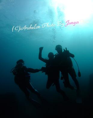 八丈島 体験ダイビング