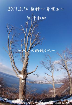 十和田ブルー