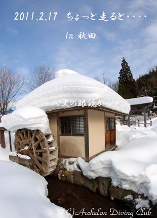 今日は冬景色!