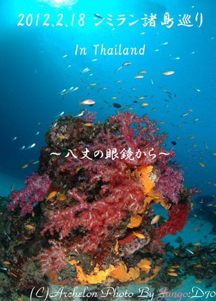 タイ スミランクルーズ