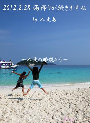 八丈島にもこんなビーチ欲しい。。