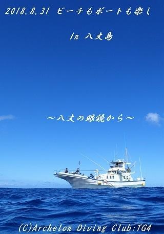 180831-idekyoyasoso02.jpg