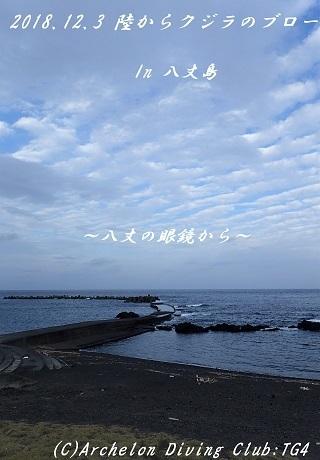 181203-nonsoko02.jpg
