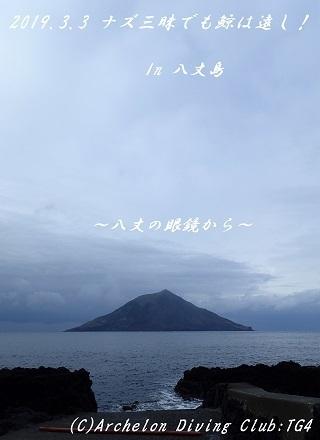 190303-naya02.jpg