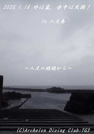 200118-ya02.jpg