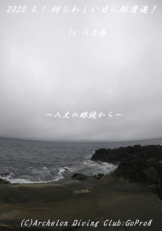 200401-na02.jpg