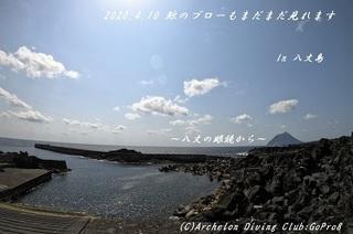200410-ya02.jpg