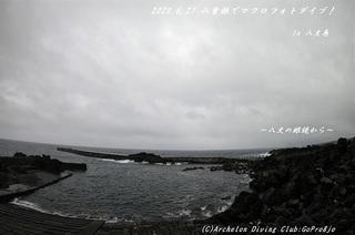 200627-ya02.jpg