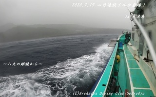 200719-tare02.jpg
