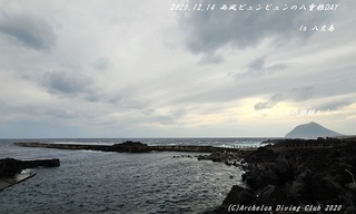 201214-ya02.jpg