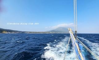 210223-whale01.jpg
