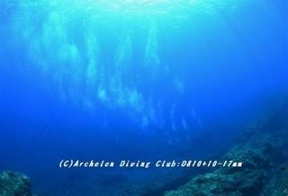 diver180806-01.jpg